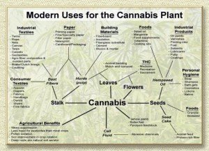 Source: http://relegalize.info/hemp/10-reasons-for-relegalization.shtml