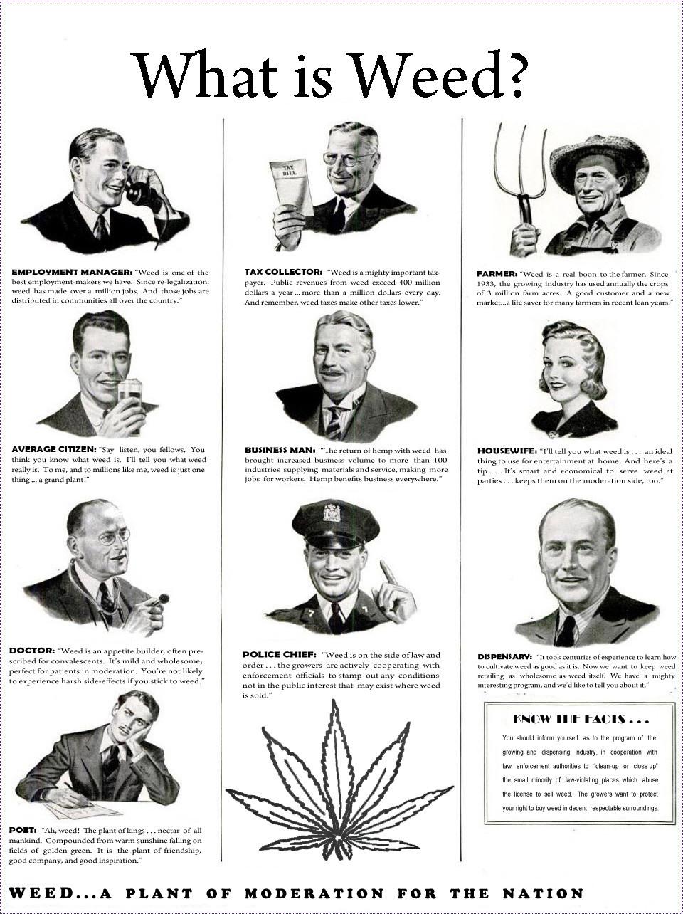 What is Weed? - Weedist