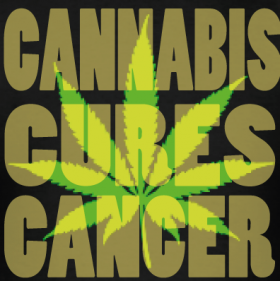 Video: Proof That Marijuana Can Cure Cancer!