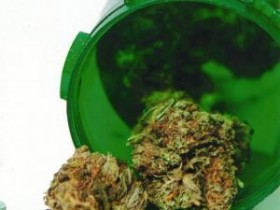 Source: http://stopthedrugwar.org/chronicle/2012/jul/09/massachusetts_medical_marijuana