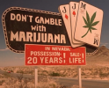 Medical marijuana bill proposed for 2013 Nevada Legislature