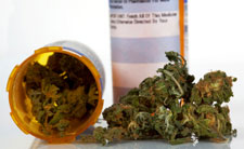 Source: http://blog.norml.org/2012/08/09/scientific-review-there-is-now-clear-evidence-that-cannabinoids-are-useful-for-the-treatment-of-various-medical-conditions/