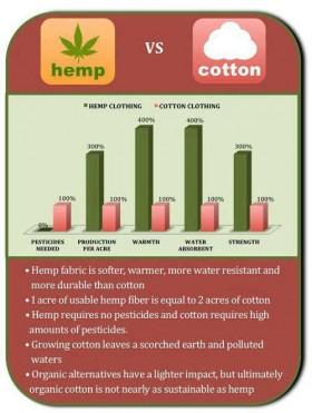 Infographic: Hemp vs. Cotton