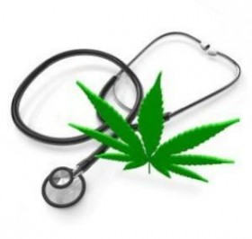 Medical Marijuana Update (2013.05.22)