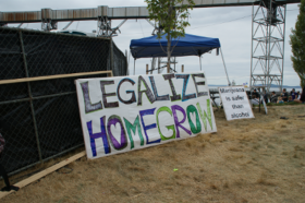Reflections on Seattle HempFest: Marijuana Acceptance
