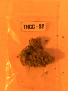 The First Annual 'The Hemp Connoisseur': Part 3: Strain Reviews 2; Source: Prospero