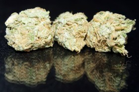 SMC medical marijuana - Blue Dream web, Source: , Source: https://www.facebook.com/SeriousMedicineCollective