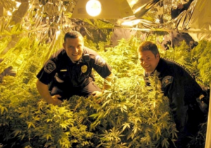 http://www.marijuana.com/news/wp-content/uploads/2012/06/Protect-And-Serve.png
