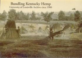 Marijuana Measures Strengthen Hemp Efforts in Kentucky