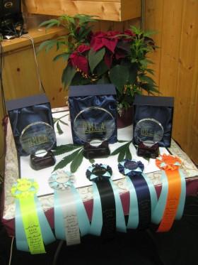 11th Oregon Medical Cannabis Awards Winners