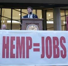 Industrial Hemp Farming Legislation Reintroduced in Congress