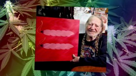This is Willie Nelson Endorsing Gay Marriage… and Weed