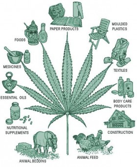 Hemp: Unlimited Fuel for the Green Rush