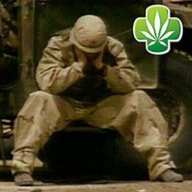 Oregon Senate Approves Medical Marijuana for PTSD