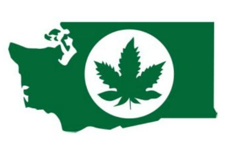 What Do You Think of the New Washington State Marijuana Logo? | source: http://www.bizjournals.com/seattle/blog/2013/05/no-its-not-a-stoner-sticker-its.html?s=image_gallery