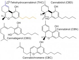 Study: Cannabinoid (CBD) Reduces Cigarette Consumption