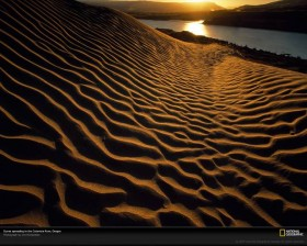 Weedist Destinations: Oregon Sand Dunes