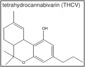 Long-Ignored Cannabinoid THCV May Hold Key to Diabetes