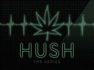hush the series - medical cannabis web series drama, Source: https://s3.amazonaws.com/ksr/projects/541299/photo-main.jpg?1367376043