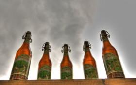 Hemp Beer!? Can It Be True?