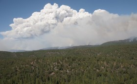 Federal Official: Pot Farmers Didn't Start Yosemite Fire