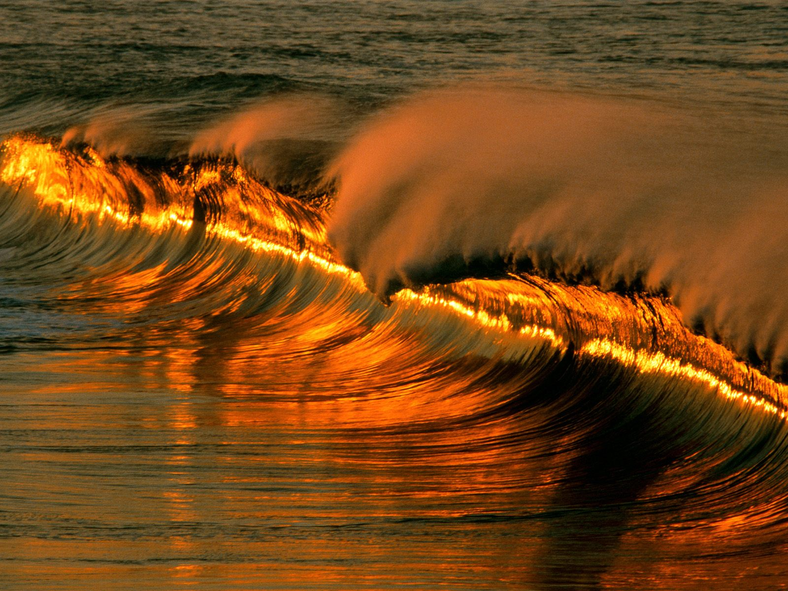 Golden-Wave-Sunset-Puerto-Escondido-Mexico, Source: http://www.travelwalls.net/wp-content/uploads/2012/08/Golden-Wave-Sunset-Puerto-Escondido-Oaxaca-Mexico.jpg