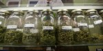 Fort Collins, CO Delays Recreational Marijuana Shops