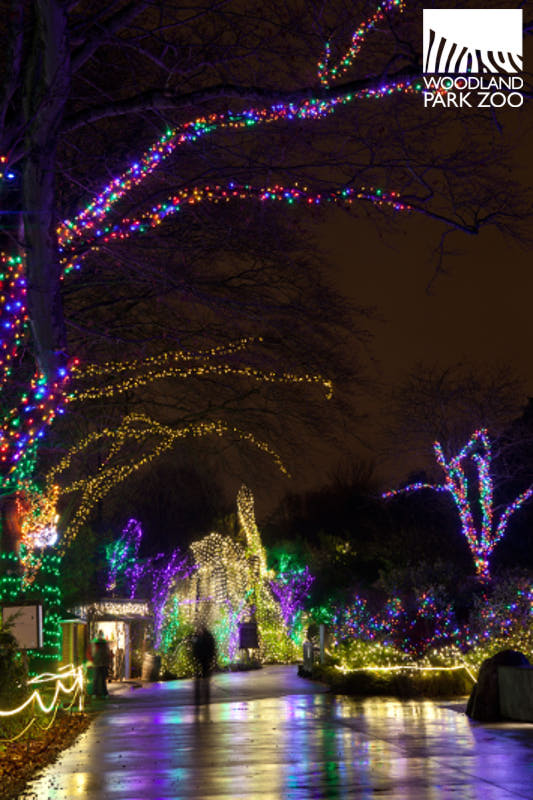 Title:Weed + ZooLights = Amazing, Source: http://0.tqn.com/d/seattle/1/0/2/E/-/-/Wildlights---Jeremy-Dwyer-Lindgren-Woodland-Park-Zoo.jpg