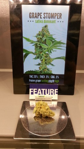 Top 5 Strains Available From Colorado Legal Marijuana Stores