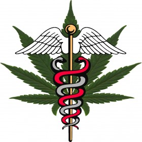 Michigan Medical Marihuana Review Panel Recommends PTSD As Qualifying Condition