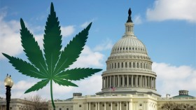 Medical Marijuana Advocates Descend on Capitol Hill
