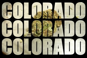 Marijuana Is Going Great, Says Colorado Government