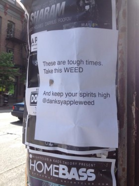 The Weed Fairy Strikes Seattle