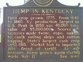 DEA Stands Down: Allows Kentucky to Go Forward With Hemp Planting