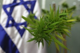 International Cannabis Update: Israel and Medical Marijuana