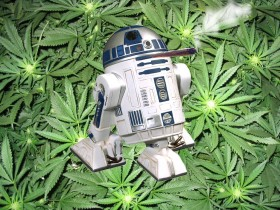 Seven Strains for the Star Wars Fan