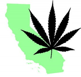 A Classic Example of Why Regulating Marijuana in California Is So Tricky
