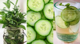 Great Edibles Recipes: Medicated Fruit Spritzers