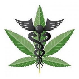 Organizers: Oklahoma Medical Marijuana Petition Will Fall Short