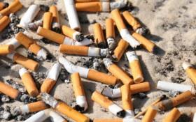 Are Cigarettes More Dangerous Than Marijuana?