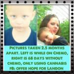 4 Year Old Kicks Cancer With Cannabis, Source: http://www.medicalmarijuanablog.com/wp-content/uploads/2014/01/medical-marijuana-case.png