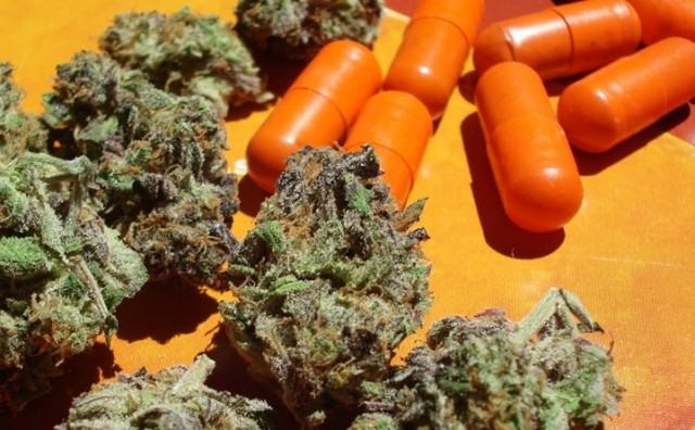 Is Big Pharma Behind Anti-Cannabis Research?