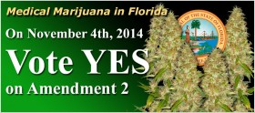 Poll: Sixty-Four Percent of Florida Voters Back Constitutional Amendment to Legalize Medical Marijuana