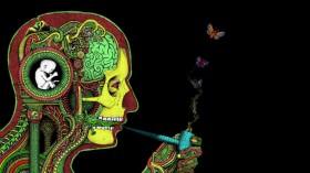 Cannabis Consumption Helps With Brain Trauma