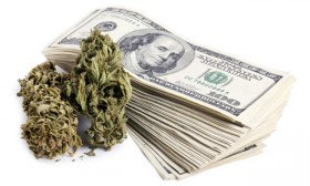 Dollars, Chasing Cannabis Profits, Leave US