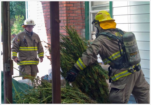 Humboldt Firefighters Heroically Save Helpless Weed From Burning Building