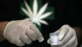 """Medicine"" on Trial in Cannabis Scheduling Hearing"