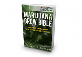 Book Review: Marijuana Grow Bible, by Robert Bergman