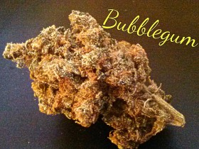 My Favorite Strains: Bubblegum