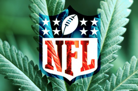 NFL and Cannabis: Quasi-Freepass and Why Players Use MJ